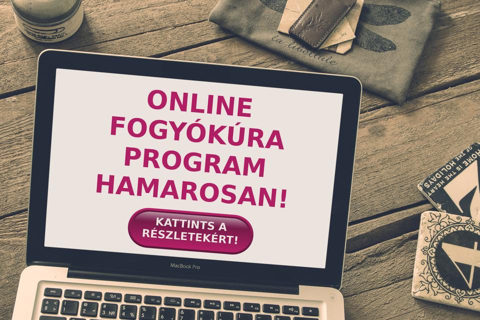 online fogyókúra program
